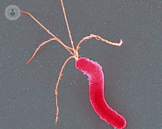 H_pylori_infection