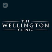 The Wellington Clinic