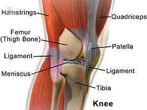 knee fat pad removal